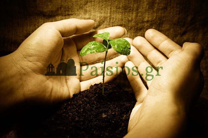 paisiosgr-didaxes-Παισιος Τιμολογιο, Παισιος Δωρεά, Παισιος Φορολογία, Μένος Θεού, Ημέρα της Κρίσεως, Αποδείξεις, Τιμολόγια, Παισιος Φόρος