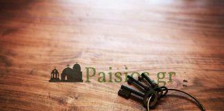 paisios-pater-agios-monaxos-paisios (29)